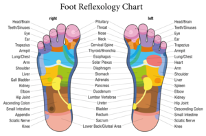 Home. foot chart